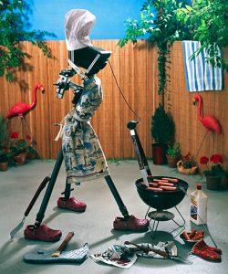 barbeque-camera