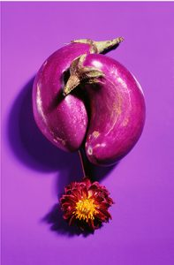eggplantsflower