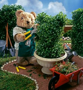 topiary-gardener